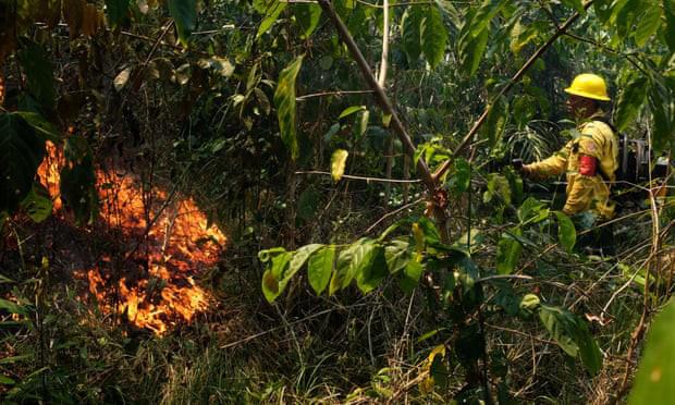 Cháy rừng hoành hành, Brazil lo bộ lạc khu vực Amazon bị xóa sổ - Ảnh 1.