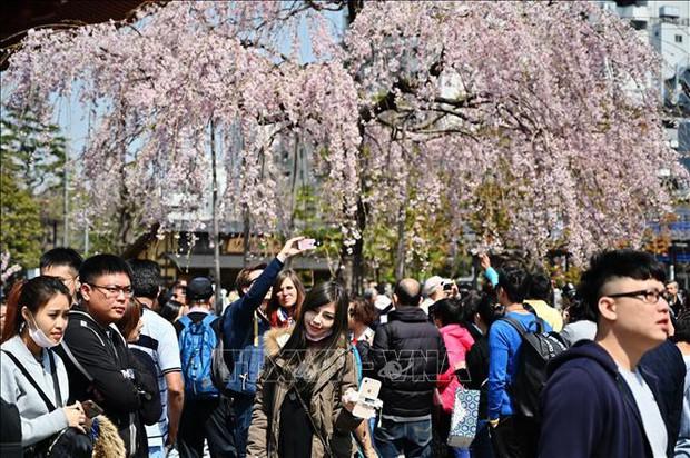 Tokyo là thành phố an toàn nhất thế giới - Ảnh 1.