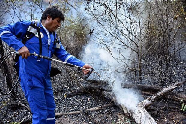 Tổng thống Bolivia và bộ lạc Amazon tự dập cháy rừng - Ảnh 1.