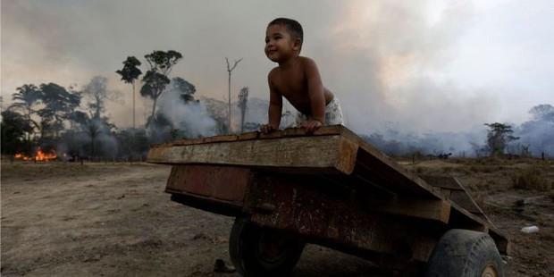 WHO cảnh báo tác động của cháy rừng Amazon đối với sức khỏe trẻ em - Ảnh 1.