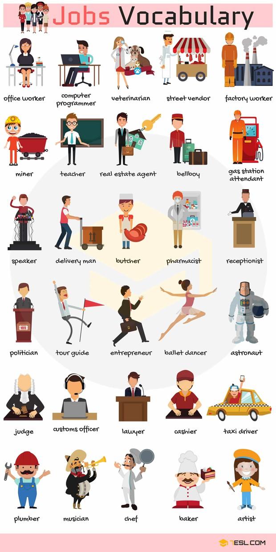 Từ vựng Tiếng Anh về nghề nghiệp ai cũng cần phải biết để còn viết vào CV xin việc - Ảnh 1.