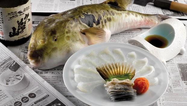 7,5 triệu đồng/100g thịt, ai mà ngờ loại cá vừa xấu xí vừa cực độc này lại đáng giá ở Nhật Bản đến thế - Ảnh 1.