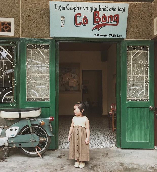 Cô bé mới 4 tuổi đã là mem cứng của hội ghiền Đà Lạt, cư dân mạng đùa chẳng sớm thì muộn em cũng thành đại sứ du lịch nơi đây! - Ảnh 1.