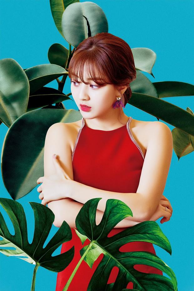 Bạn gái quyền lực của idol rung chuyển Kbiz Kang Daniel: Mỹ nhân TWICE bị chê béo, lột xác nóng bỏng, tính cách hiếm có - Ảnh 4.