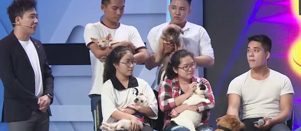 Người bí ẩn: Cô gái gây tranh cãi vì quyết định không sinh con để chăm lo cho chó mèo - Ảnh 3.
