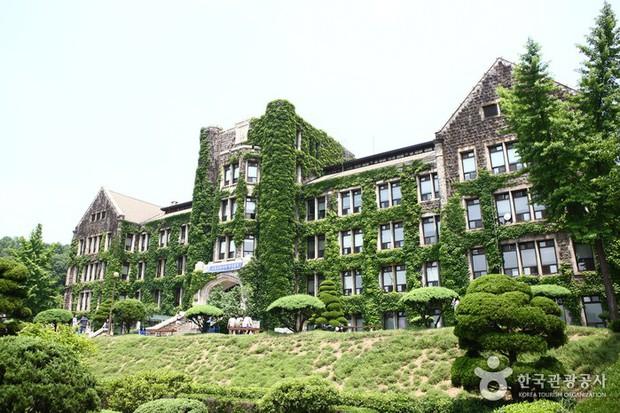 Cả xứ Hàn dậy sóng vì cậu cả nhà Angelina Jolie sẽ nhập học tại trường ĐH Yonsei top 3 danh giá bậc nhất xứ kim chi - Ảnh 6.