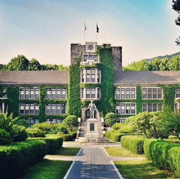 Cả xứ Hàn dậy sóng vì cậu cả nhà Angelina Jolie sẽ nhập học tại trường ĐH Yonsei top 3 danh giá bậc nhất xứ kim chi - Ảnh 5.