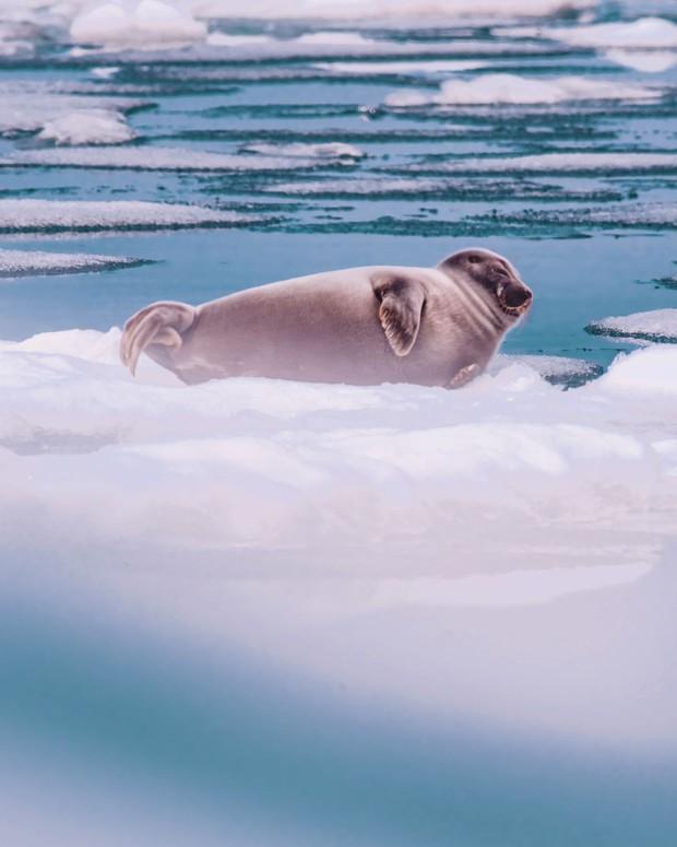 Nhìn tưởng Bắc Cực, nhưng đây lại là hồ nước rộng và sâu nhất thế giới, ẩn chứa 5 bí ẩn nhân loại chưa có câu trả lời - Ảnh 5.