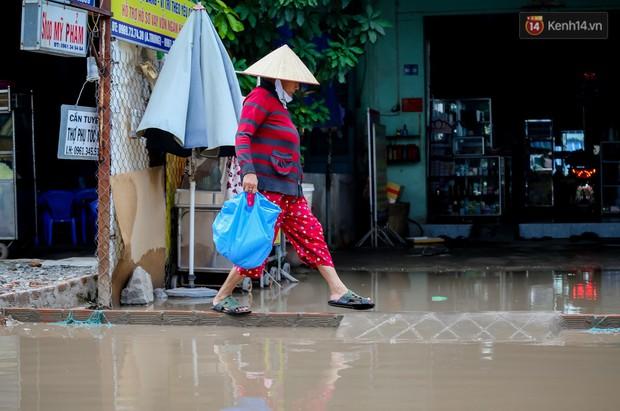 Nhìn từ trên cao con đường lầy lội nhất Sài Gòn: Gần 100 ao nước lớn nối tiếp nhau hơn 2km - Ảnh 16.