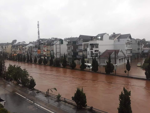 Đà Lạt ngập chưa từng thấy sau trận mưa lớn kéo dài, nhiều ô tô chìm trong biển nước - Ảnh 1.