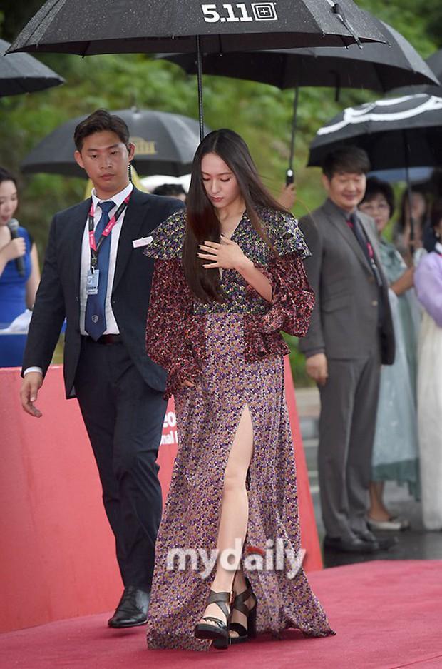 Thảm đỏ quy tụ dàn sao Hàn quyền lực: Yoon Eun Hye trở lại xuất sắc, Krystal đẹp ngút ngàn bất chấp đầm sến sẩm - Ảnh 5.