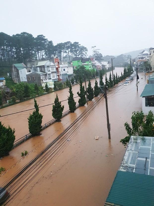 Nhiều người sốc nặng không nhận ra đây là Đà Lạt vì chìm trong biển nước, lật đật bỏ ngay tour du lịch vào cuối tuần này - Ảnh 4.