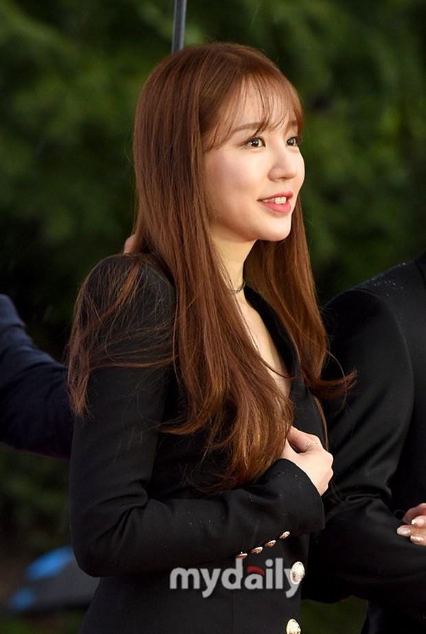 Thảm đỏ quy tụ dàn sao Hàn quyền lực: Yoon Eun Hye trở lại xuất sắc, Krystal đẹp ngút ngàn bất chấp đầm sến sẩm - Ảnh 4.