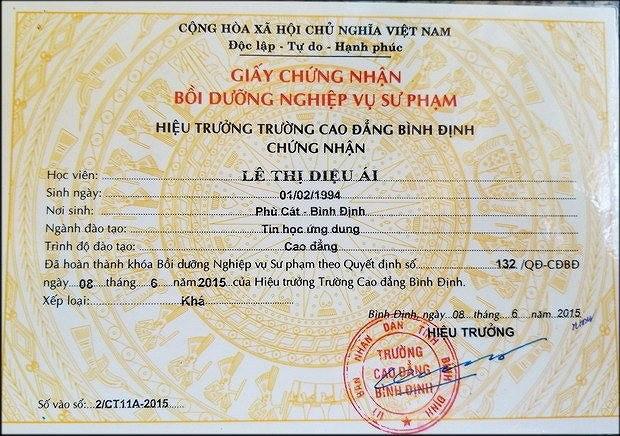Tuýt còi trường CĐ Bình Định cấp giấy chứng nhận sư phạm trái quy định - Ảnh 1.