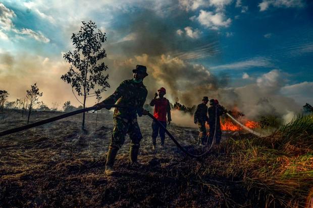 """Amazon không """"đơn độc"""", cả hành tinh oằn mình trong những đám cháy dữ dội - Ảnh 3."""