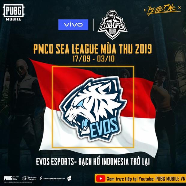 PUBG Mobile: Đây chính là những đối thủ sừng sỏ nhất của Việt Nam tại PMCO SEA League mùa Thu 2019 - Ảnh 6.