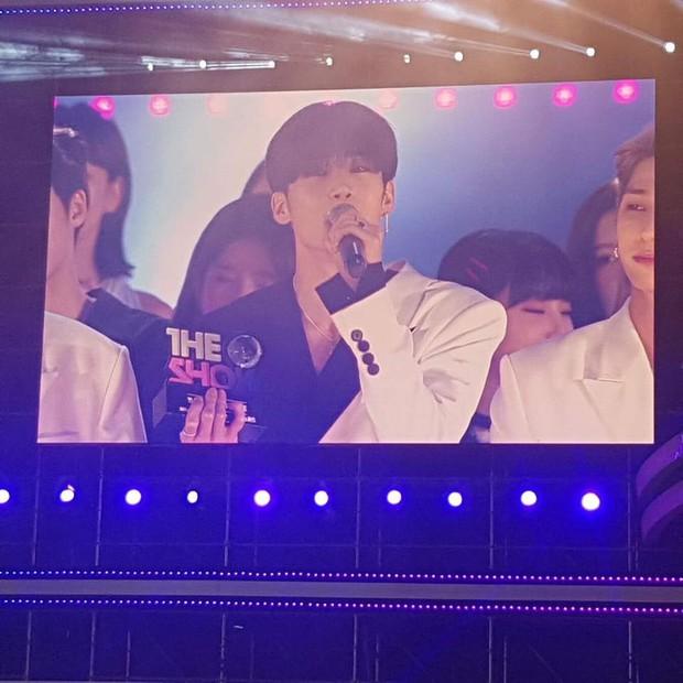 X1 phá kỷ lục Kpop mọi thời đại về thời gian giật cúp trên show âm nhạc chỉ sau 5 ngày debut - Ảnh 1.