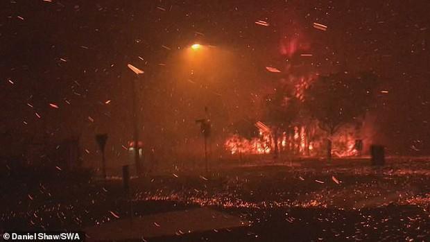 Cháy rừng bất thường tại Australia - Ảnh 1.