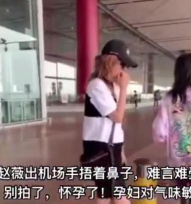Giữa ồn ào ly hôn, Triệu Vy lại mang thai con thứ 2 cho chồng đại gia? - Ảnh 3.