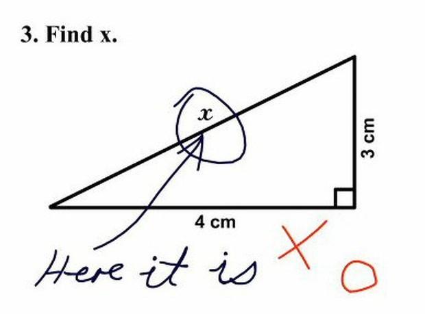 """20 câu trả lời bá đạo trong bài kiểm tra chỉ những đứa trẻ """"thiên tài"""" mới có thể nghĩ ra - Ảnh 8."""