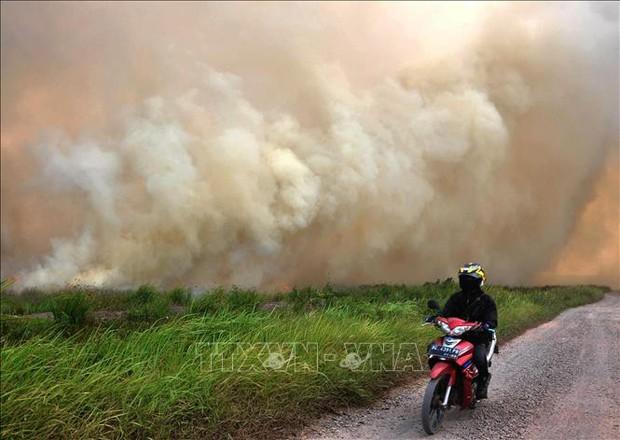 Cháy rừng dữ dội ở Indonesia, hàng nghìn người làm lễ cầu mưa - Ảnh 1.