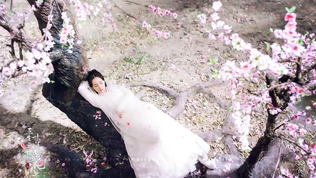 """5 mỹ nhân """"đệ nhất thiên hạ"""" trên màn ảnh Hoa ngữ: Thượng thần Dương Mịch bít cửa trước cô cô Lý Nhược Đồng - Ảnh 22."""