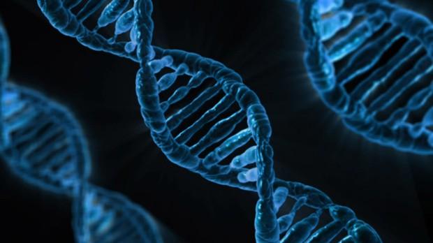 Nhóm nhà khoa học tình cờ tìm ra vũ khí bí mật tiêu diệt HIV - Ảnh 1.