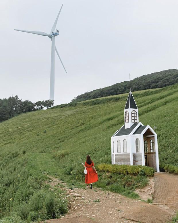 Dọc khắp Hàn Quốc những địa điểm du lịch xanh đang đốn tim giới trẻ - Ảnh 1.