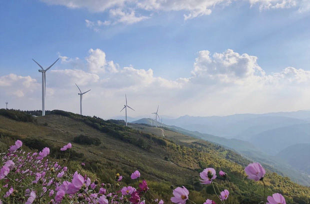 Dọc khắp Hàn Quốc những địa điểm du lịch xanh đang đốn tim giới trẻ - Ảnh 3.