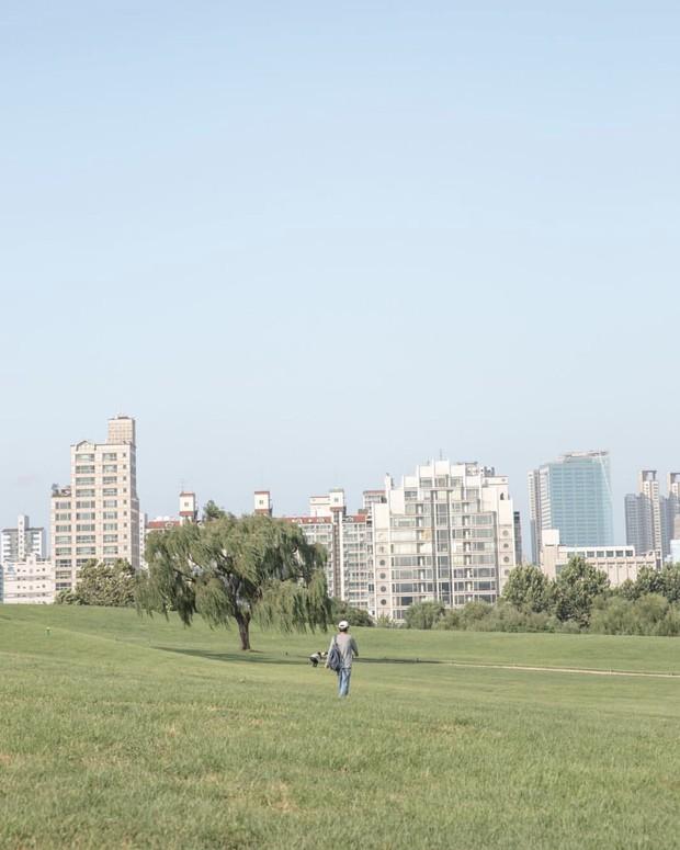 Dọc khắp Hàn Quốc những địa điểm du lịch xanh đang đốn tim giới trẻ - Ảnh 9.
