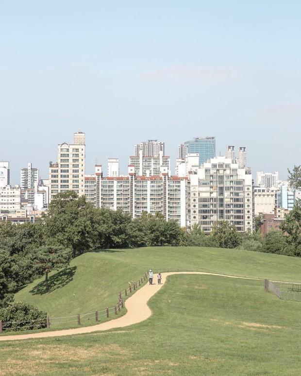 Dọc khắp Hàn Quốc những địa điểm du lịch xanh đang đốn tim giới trẻ - Ảnh 10.