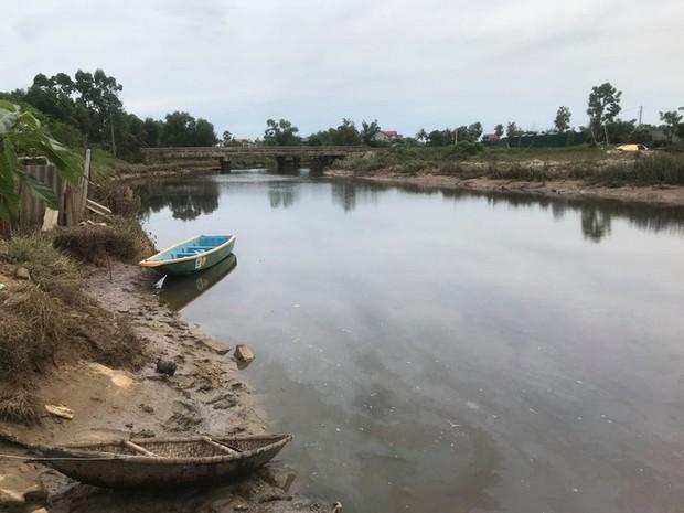 Hà Tĩnh: Người dân nơm nớp lo khi cá sấu xuất hiện trên sông - Ảnh 1.