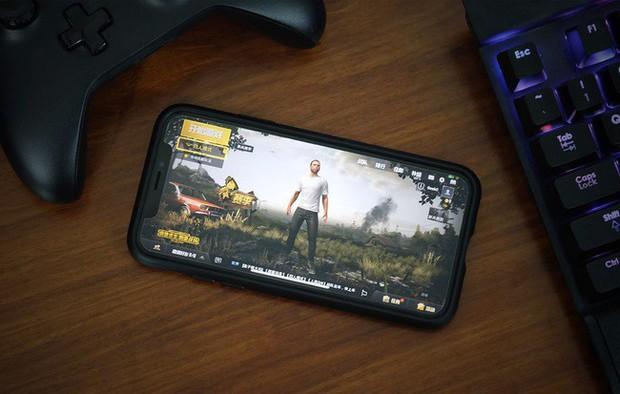 Ấn Độ: Quá nghiện PUBG Mobile, game thủ giết luôn cha ruột! - Ảnh 2.