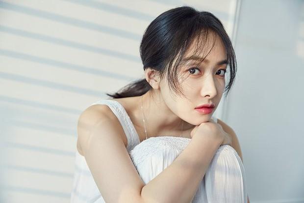 SM thẳng tay gạch tên Amber, Luna khỏi profile f(x) nhưng vẫn còn luyến lưu Victoria, fan bức xúc đưa ra nguyên nhân đằng sau - Ảnh 2.