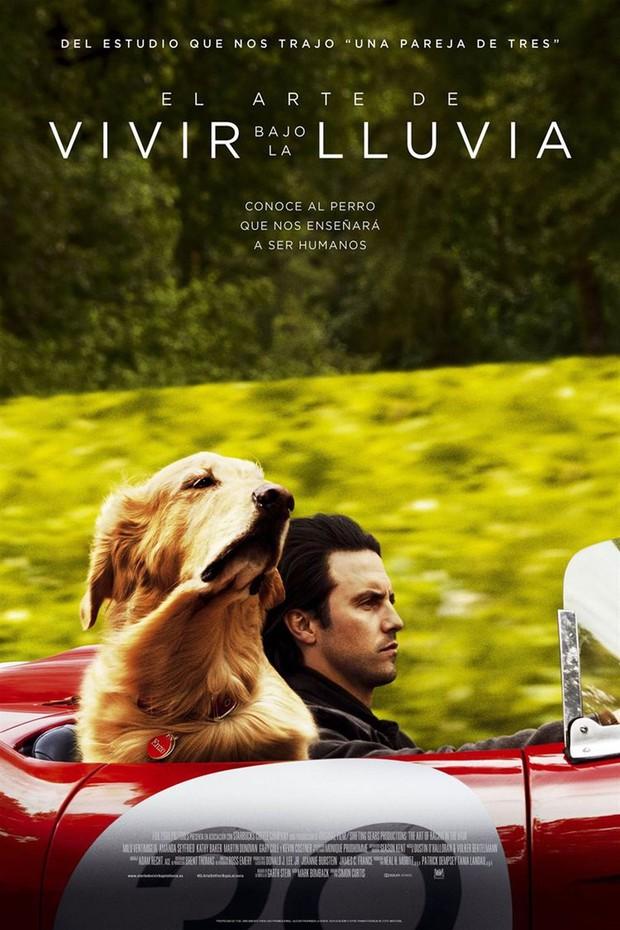 Phim rạp cuối tuần: Soái ca ngự tỷ châu Á tấp nập đổ bộ, 2 phim kinh dị Âu Mỹ liệu có đủ sức cạnh tranh? - Ảnh 18.