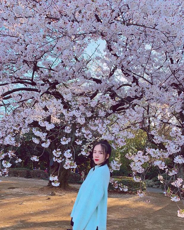 """Còn gì khổ hơn: Chụp ảnh với hoa anh đào khi đi Nhật, Phương Ly """"hoá điên"""" luôn vì background dính quá nhiều người! - Ảnh 3."""