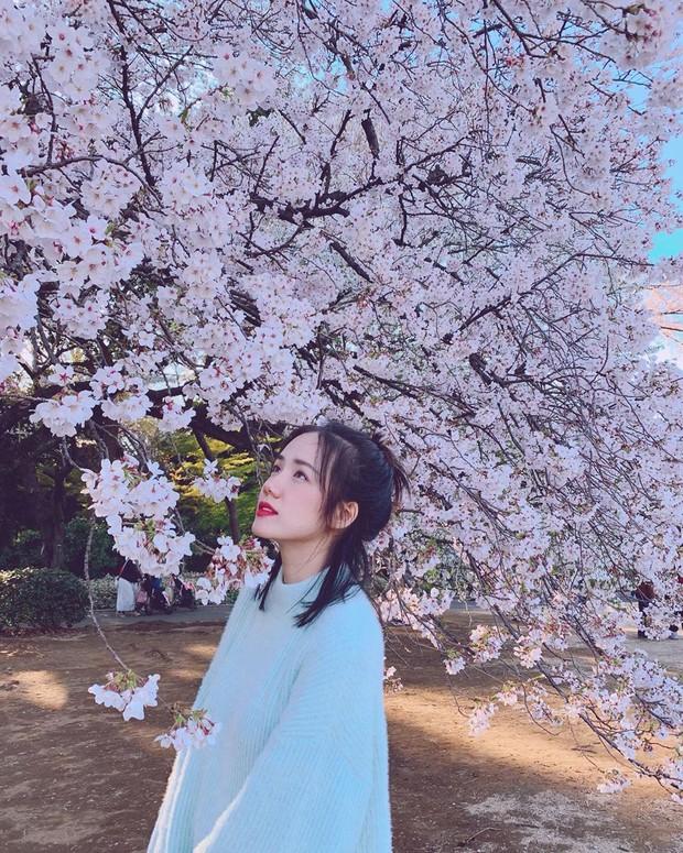 """Còn gì khổ hơn: Chụp ảnh với hoa anh đào khi đi Nhật, Phương Ly """"hoá điên"""" luôn vì background dính quá nhiều người! - Ảnh 2."""