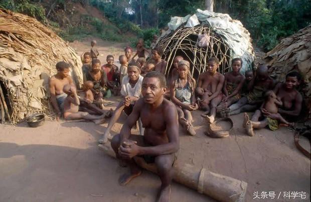 Thế giới thực sự tồn tại chủng người lùn như người hobbit tại Châu Phi - Ảnh 4.