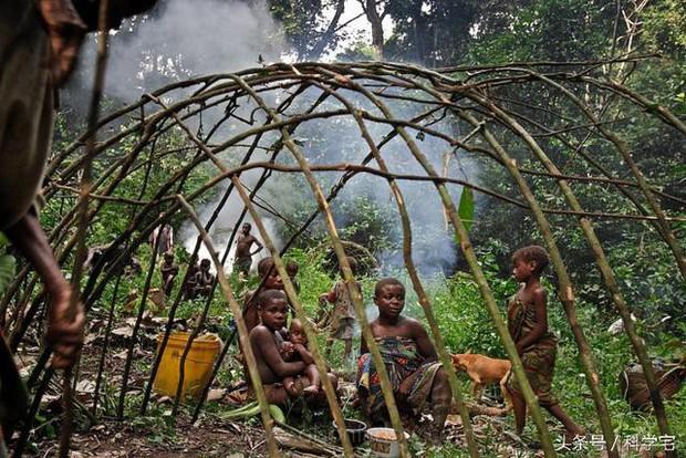 Thế giới thực sự tồn tại chủng người lùn như người hobbit tại Châu Phi - Ảnh 5.