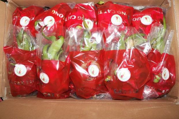 6 loại trái cây tươi ở Việt Nam đã được xuất khẩu thành công với giá bán khó tin - Ảnh 6.