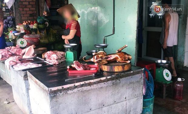TP. HCM khuyên người dân không nên ăn thịt chó vì dễ bị nhiễm bệnh dại - Ảnh 2.