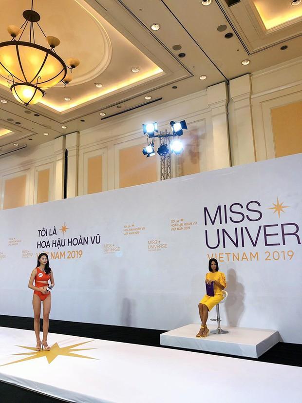 Dàn thí sinh Hoa hậu Hoàn vũ miền Bắc trong ảnh bikini chưa photoshop: Body Tường Linh, Đào Hà và mỹ nhân khác ra sao? - Ảnh 3.