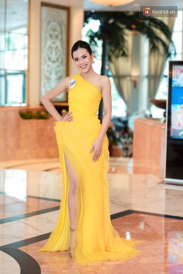 Hoa hậu Hoàn vũ Việt Nam đổ bộ miền Bắc: Tường Linh khoe vòng eo 53, mỹ nhân người dân tộc thiểu số gây chú ý - Ảnh 4.