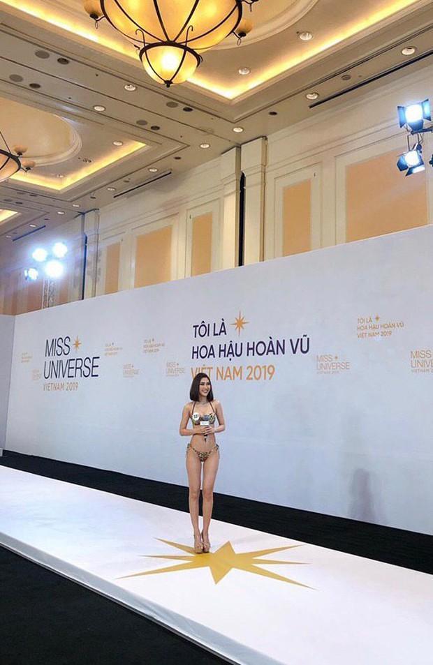Dàn thí sinh Hoa hậu Hoàn vũ miền Bắc trong ảnh bikini chưa photoshop: Body Tường Linh, Đào Hà và mỹ nhân khác ra sao? - Ảnh 1.