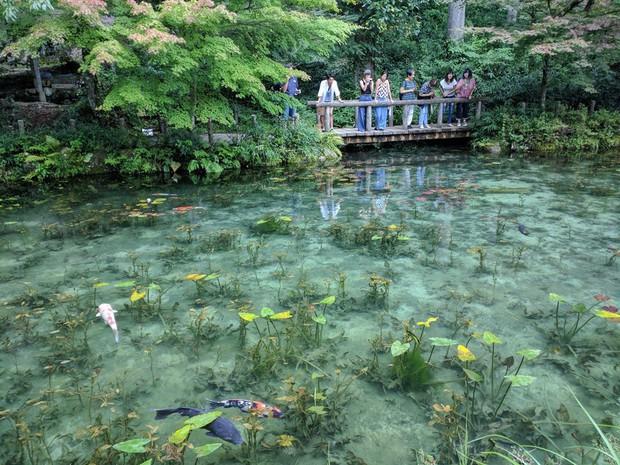 Trầm trồ trước hồ đẹp như tranh sơn dầu ở Nhật Bản - ảnh 3