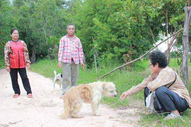 Chú chó đi lạc kiên trì đứng đợi chủ suốt 4 năm trời và hành động gây bất ngờ khi gặp lại người chủ cũ - Ảnh 3.