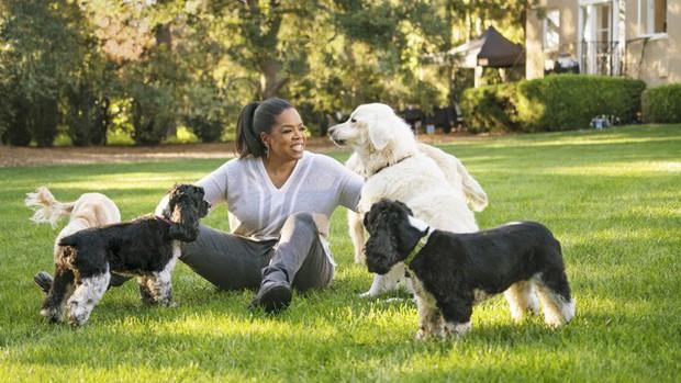 Tập duy trì thói quen buổi sáng của Oprah Winfrey trong 1 tuần, tôi nhận ra sống lành mạnh không hề dễ dàng nhưng HIỆU QUẢ, rất đáng để thử! - Ảnh 2.