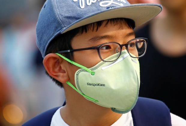 Cháy rừng khiến các nước Đông Nam Á chìm trong khói mù - Ảnh 11.