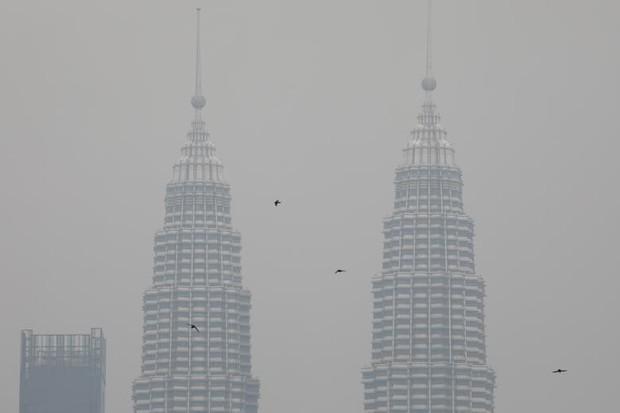 Cháy rừng khiến các nước Đông Nam Á chìm trong khói mù - Ảnh 12.