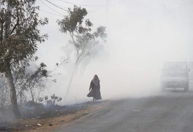 Cháy rừng khiến các nước Đông Nam Á chìm trong khói mù - Ảnh 4.